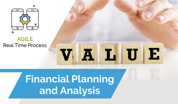 Financial Planning Analysis | VisionTree Ventures