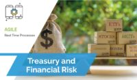 Treasury-and-Financial-Risk